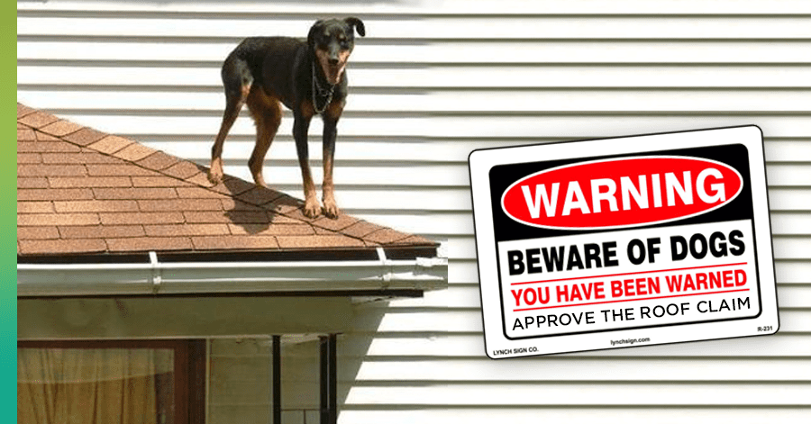 roofing contractor dogs